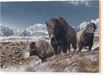 Bison Herd In Winter Wood Print by Daniel Eskridge