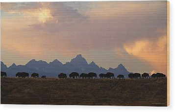 Bison March Wood Print