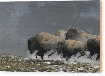 Bison Stampede Wood Print
