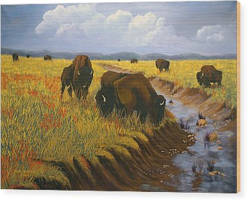 Bison Still Roam The Plains Wood Print