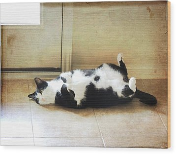 Wood Print featuring the photograph Black And White Cat Reclining by Jayne Wilson