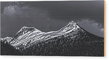Black And White Deer Mountain  005 Wood Print
