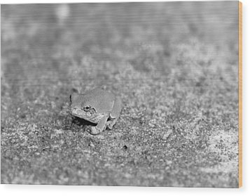 Black And White Frogger Wood Print