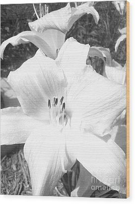 Black And White Hibiscus  By Saribelle Rodriguez Wood Print by Saribelle Rodriguez