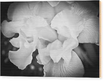 Black And White Hibiscus Wood Print