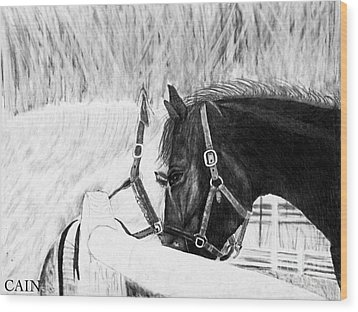 Black And White Horses Art Print Wood Print