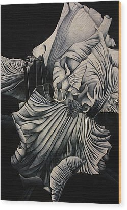 Black And White Iris Study Wood Print by Bruce Bley