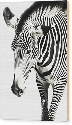 Black And White Wood Print by Jenny Rainbow