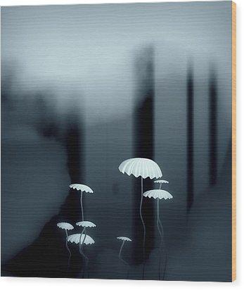 Black And White Mushrooms Wood Print by GuoJun Pan
