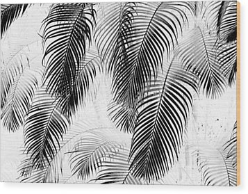 Black And White Palm Fronds Wood Print by Karon Melillo DeVega