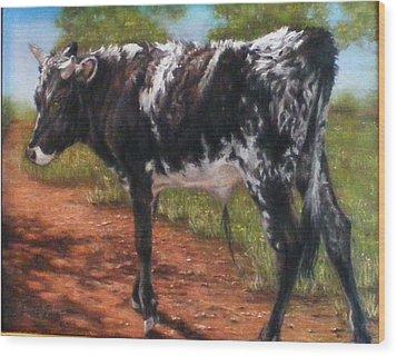 Black And White Shorthorn Steer Wood Print