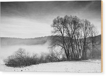 Black And White Winter Landscape With Trees Wood Print by Matthias Hauser