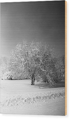 Black And White Winter Wood Print by Thomas Fouch