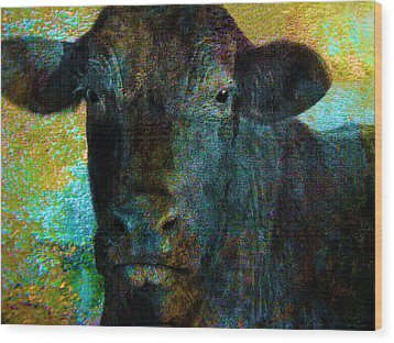 Black Angus Wood Print