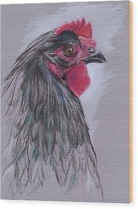 Black Australorp Hen Wood Print by MM Anderson