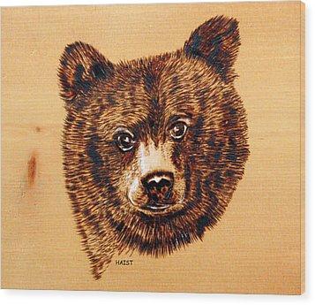 Black Bear Cub Wood Print by Ron Haist