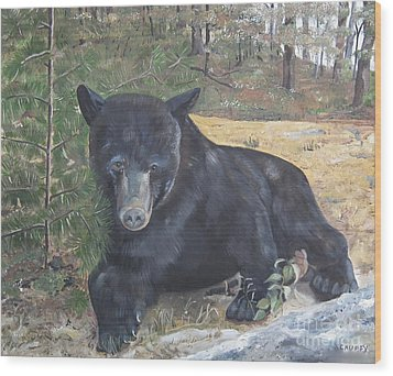 Wood Print featuring the painting Black Bear - Wildlife Art -scruffy by Jan Dappen