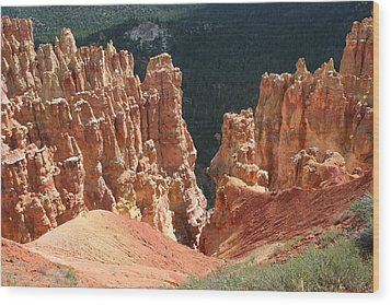 Black Birch Canyon Wood Print by Mary Gaines