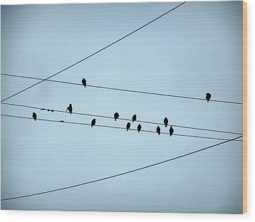 Black Birds Waiting In Blue Wood Print