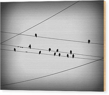 Black Birds Waiting Wood Print