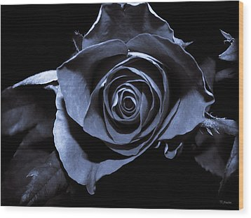 Black Blue Rose Wood Print by Yvon van der Wijk