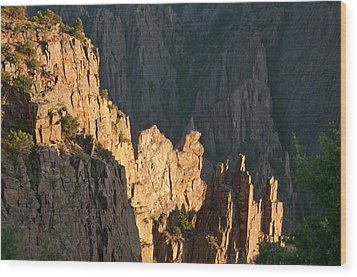 Wood Print featuring the photograph Black Canyon Sitting Camel  by Eric Rundle
