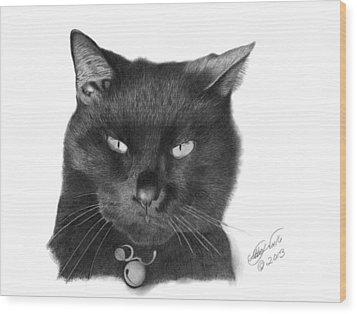 Black Cat - 008 Wood Print by Abbey Noelle