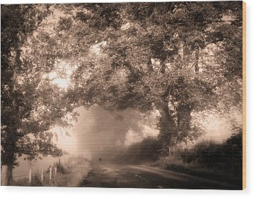 Black Dog On A Misty Road. Misty Roads Of Scotland Wood Print by Jenny Rainbow