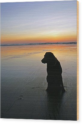 Black Dog Sundown Wood Print by Pamela Patch