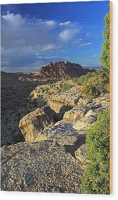 Black Dragon Canyon Vista Wood Print