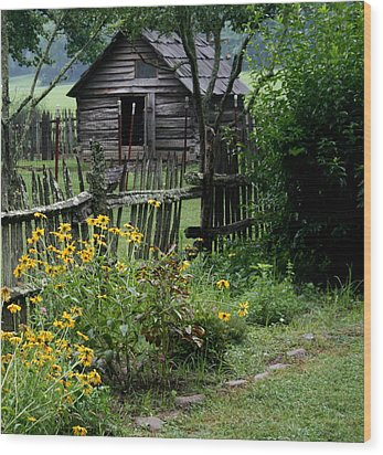 Wood Print featuring the photograph Black-eyed Susans by Cathy Harper