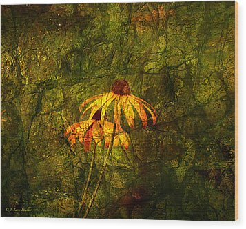 Black-eyed Susan Abstract Wood Print by J Larry Walker