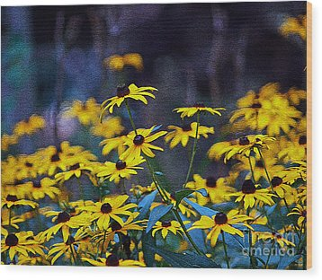 Black-eyed Susans Wood Print by Patricia Griffin Brett