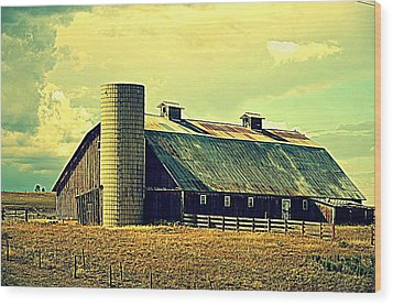 Black Forest Road Barn Wood Print by Antonia Citrino