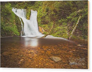 Wood Print featuring the photograph Black Forrest Waterfall by Maciej Markiewicz