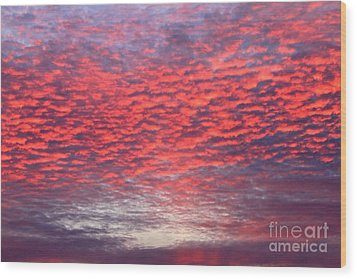 Black Friday Sunrise Wood Print