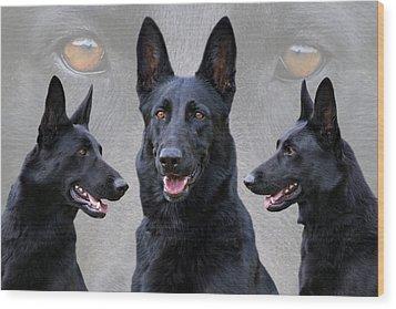 Black German Shepherd Dog Collage Wood Print by Sandy Keeton