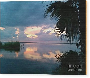 Black Hammock Sunset 3 Wood Print
