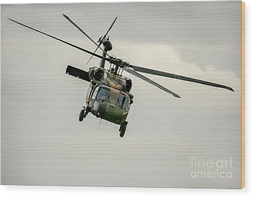 Black Hawk Swoops Wood Print