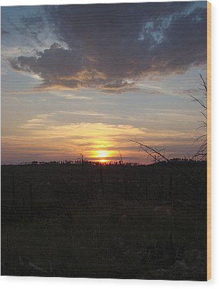 Wood Print featuring the photograph Black Hills Sunset IIi by Cathy Anderson