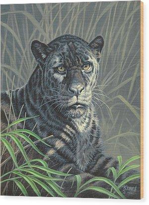 Black Jaguar Wood Print by Paul Krapf