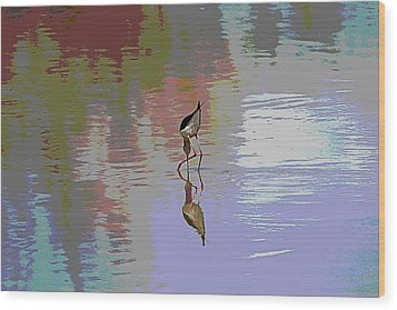 Wood Print featuring the photograph Black Neck Stilt Out In The Pond by Tom Janca
