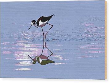 Black Neck Stilt Wood Print by Tom Janca