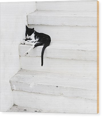 Wood Print featuring the photograph Black On White 2 by Lisa Parrish