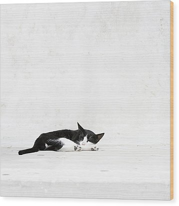 Wood Print featuring the photograph Black On White by Lisa Parrish