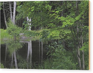 Wood Print featuring the photograph Black Pond And Maple by Colleen Williams
