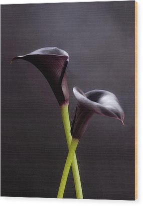 Black And White Purple Flowers Art Work Photography Wood Print