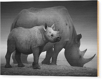 Black Rhinoceros Baby And Cow Wood Print by Johan Swanepoel