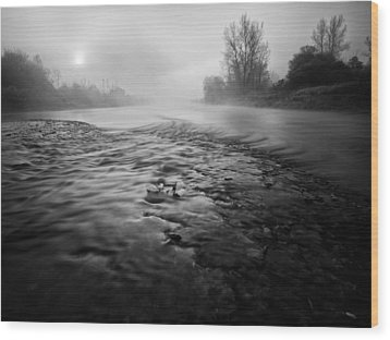 Black River Wood Print by Davorin Mance