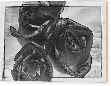 Black Roses Wood Print by Thomas Born